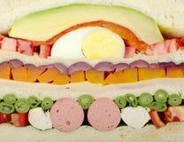Sanduíche (de seção transversal) Imagens de Stock Royalty Free