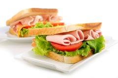 Sanduíche de turquia Fotografia de Stock