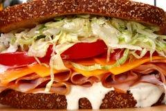 Sanduíche de turquia imagem de stock