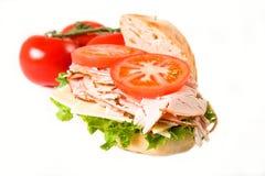 Sanduíche de turquia isolado Foto de Stock Royalty Free