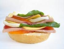Sanduíche delicioso Fotografia de Stock Royalty Free