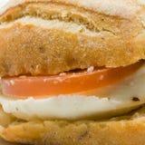 Sanduíche gourmet fotografia de stock