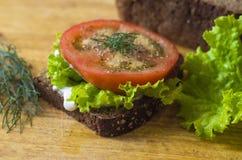 Sanduíche do vegetariano Imagem de Stock