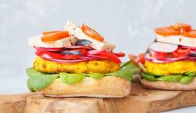 Sanduíche do vegetariano com lentilhas, tofu e vegetais imagens de stock royalty free