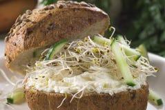 Sanduíche do Veggie Imagens de Stock