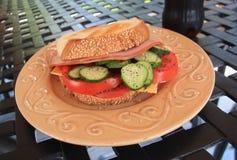 Sanduíche do verão Fotos de Stock Royalty Free