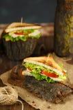Sanduíche dois saboroso com galinha, tomates, alface, queijo e especiarias na casca de uma árvore em um fundo escuro imagem de stock royalty free