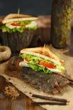 Sanduíche dois saboroso com galinha, tomates, alface, queijo e especiarias na casca de uma árvore em um fundo escuro imagens de stock