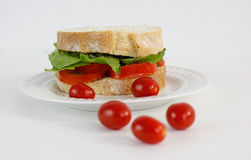 Sanduíche dos tomates Imagem de Stock
