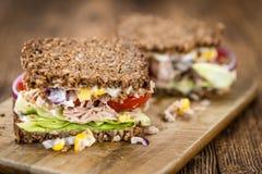 Sanduíche feito fresco do atum com foco seletivo de pão de wholemeal imagem de stock royalty free