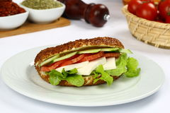 Sanduíche fresco Foto de Stock