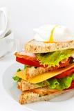 Sanduíche saboroso da carne com vegetais Imagens de Stock
