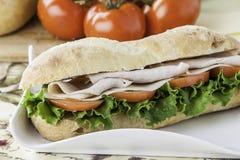 Sanduíche secundário de Turquia Imagens de Stock