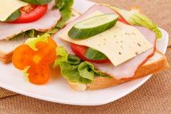 sanduíches Imagem de Stock Royalty Free