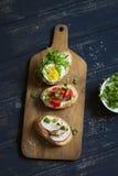 Sanduíches com os tomates do ovo, do rabanete e de cereja fotos de stock
