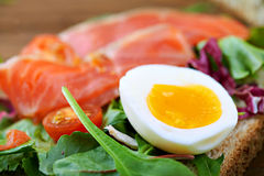 Sanduíches com salmões Imagens de Stock