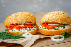 Sanduíches com salmões Foto de Stock Royalty Free