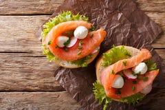 Sanduíches com salmões, a mussarela, o frisee, a cebola e rad salgados Imagens de Stock Royalty Free