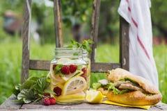 Sanduíches da limonada e de peru Imagens de Stock
