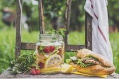 Sanduíches da limonada e de peru Fotos de Stock Royalty Free