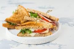 Sanduíches de clube caseiros Imagem de Stock Royalty Free