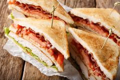 Sanduíches de clube entusiastas com peru, bacon, tomate e lettu da carne Fotos de Stock Royalty Free