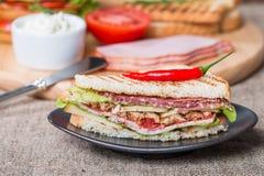 Sanduíches de clube recentemente feitos Imagens de Stock