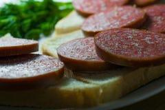 Sanduíches do pão triangulares com a salsicha vermelha da carne em uma placa redonda cerâmica branca decorada com verde perfumado Fotos de Stock Royalty Free