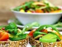 Sanduíches do vegetariano - refeição saudável Imagens de Stock