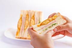 Sanduíches na mão da mulher Imagens de Stock