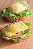 Sanduíches quentes Imagem de Stock Royalty Free