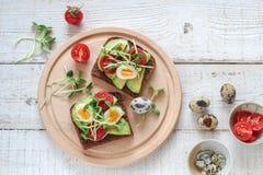 Sandu?ches saud?veis com abacate, tomate, ovos de codorniz e brotos dos verdes dos girass?is os micro fotos de stock