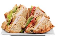 Sanduíche de clube da galinha isolado Fotografia de Stock Royalty Free
