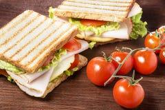 Sanduíches do piquenique Imagens de Stock Royalty Free