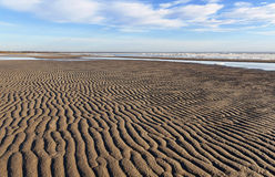 Sandufer mit Eismeer Stockfotografie