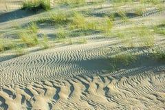 Sandvågor Arkivfoto