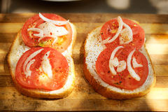 Sandvich with tomato and onion Royalty Free Stock Images