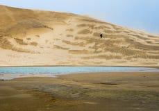 Sandwanderer stockbilder