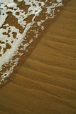 sandwave Royaltyfria Bilder