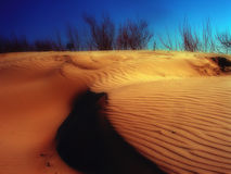 Sandwaves Stockfoto
