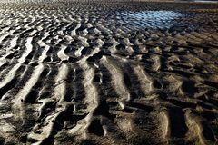 Sandwaves. Low tide on the beach Royalty Free Stock Photo
