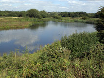 Sandwell Valley RSPB reserve Stock Images