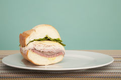 Sandwhich served up Royalty Free Stock Images