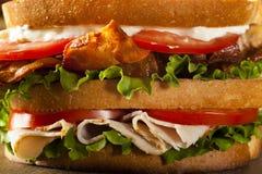 Sandwich à club de la Turquie et du lard Images libres de droits