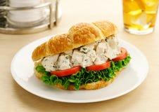 Sandwich à croissant de salade de poulet photographie stock libre de droits