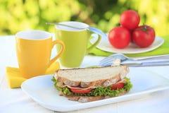 Sandwich à dinde entier photos stock