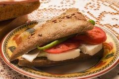 Sandwich à fromage Photo libre de droits