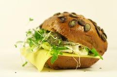 Sandwich à graine de citrouille Photos libres de droits