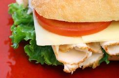 Sandwich à héros de la Turquie Photographie stock libre de droits