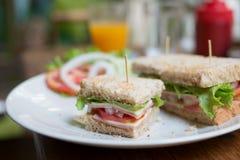 Sandwich à Ham Cheese Images libres de droits